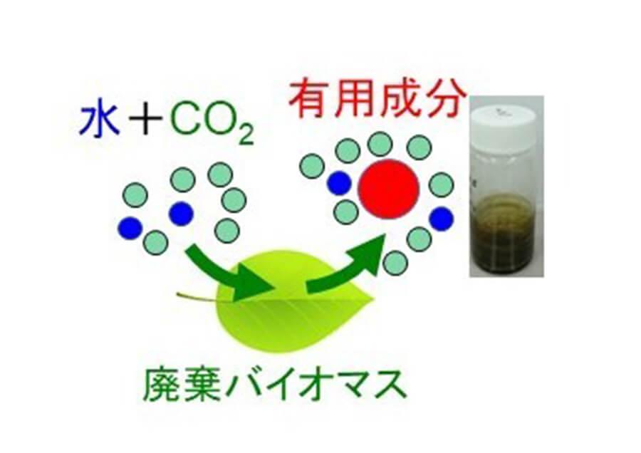環境調和型溶媒による未利用資源からの有用成分回収