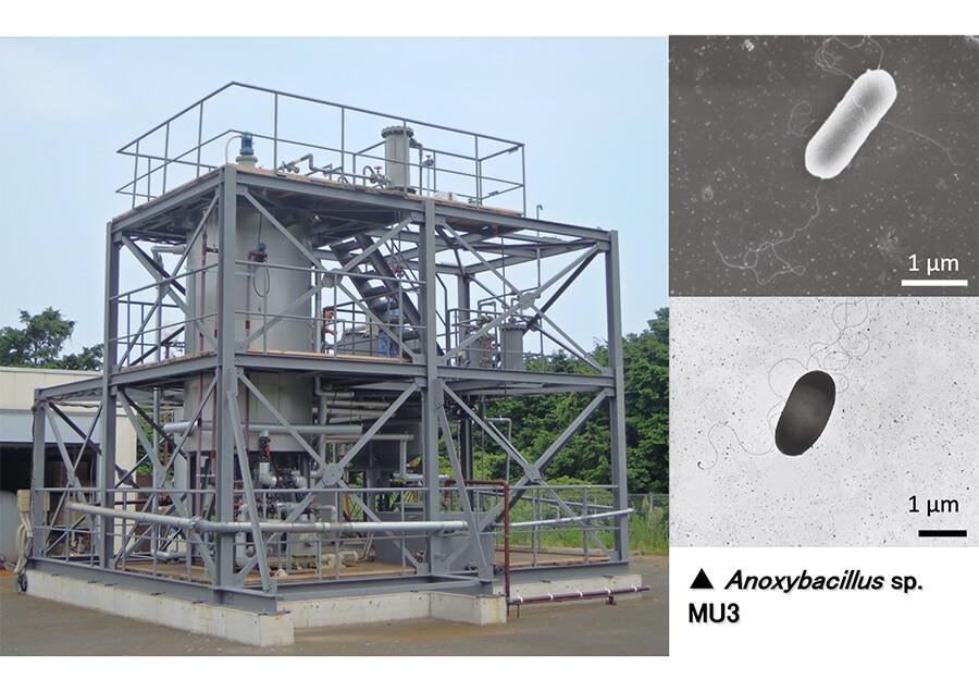 新規高温可溶化技術を用いたバイオガス発電の実現