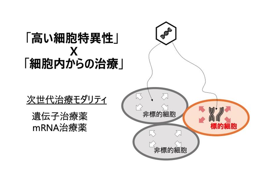 mRNA医薬による生体内細胞制御・リプログラミング